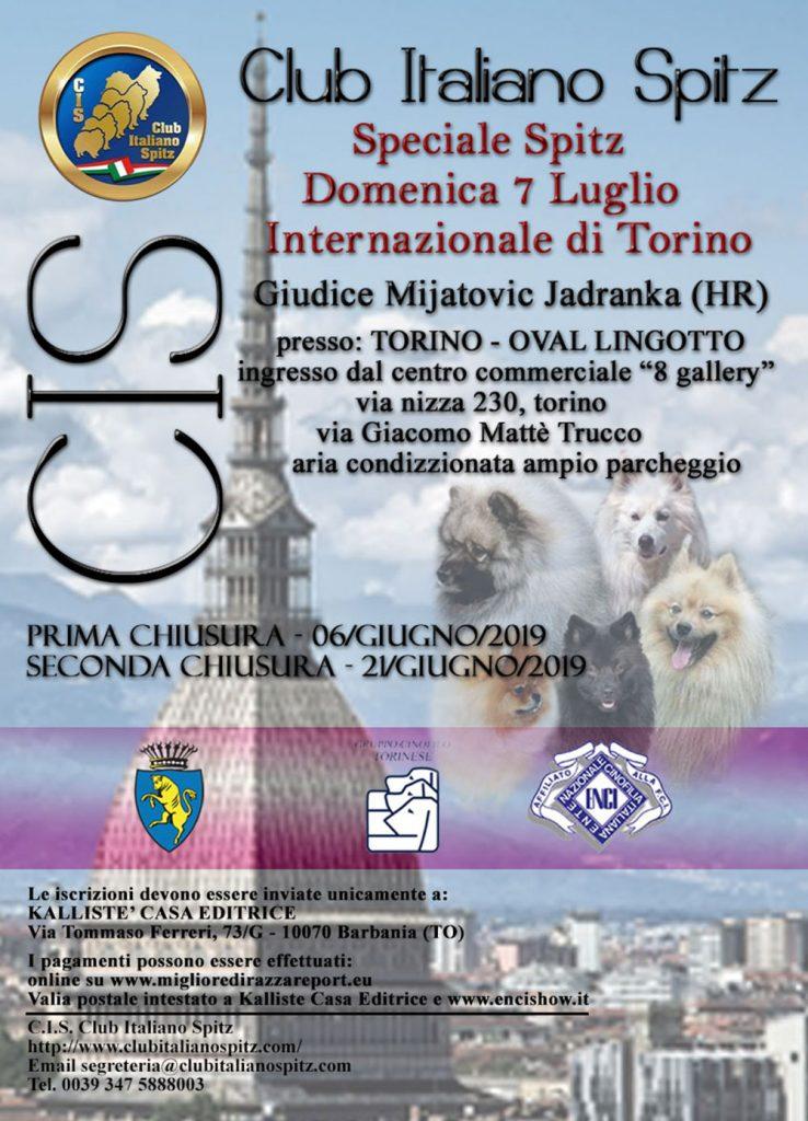 Speciale di Torino 2019