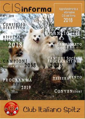 rivista cis 2018